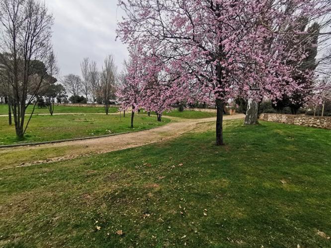 Vista del parque de La Quebradilla. Fotografía: Ayuntamiento de Azuqueca