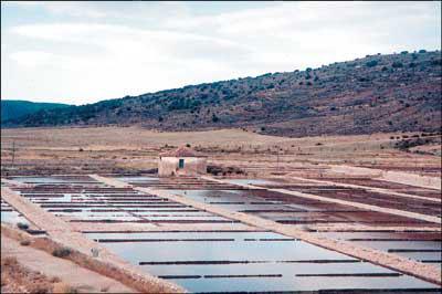 Salinas de Rienda (foto Herrera Casado)
