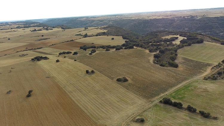 Terrenos en el Valle del Ungria donde se pretende ubicar plantas fotovoltaicas